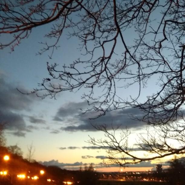 Evening Chill